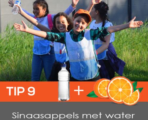 tip_9_Sinaasappel